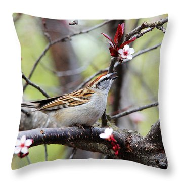Throw Pillow featuring the photograph In Song by Trina  Ansel