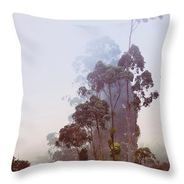 In The Blue Silence. Nuwara Eliya Throw Pillow by Jenny Rainbow