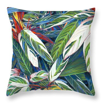 Stromanthe Sanguinea Throw Pillow