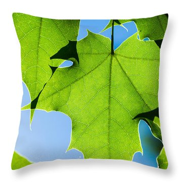 In The Cooling Shade - Featured 3 Throw Pillow