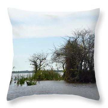 In The Everglades Throw Pillow by Renie Rutten