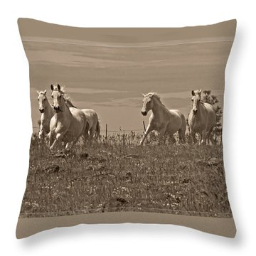 Throw Pillow featuring the photograph In The Field D5959 by Wes and Dotty Weber