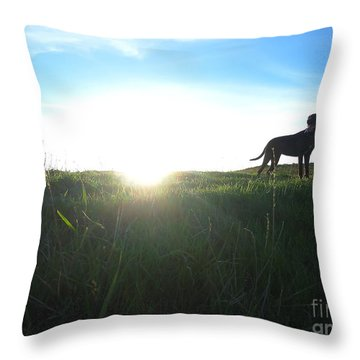 In The Field Throw Pillow by Paul Foutz