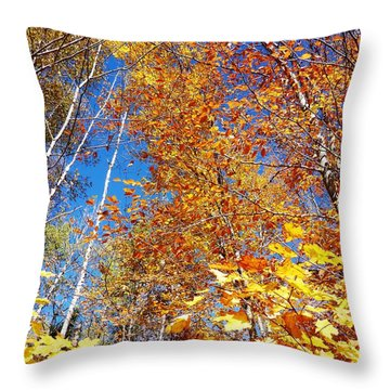 In The Forest At Fall Throw Pillow