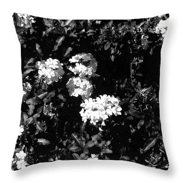 Throw Pillow featuring the photograph In The Garden- Black And White by Alohi Fujimoto