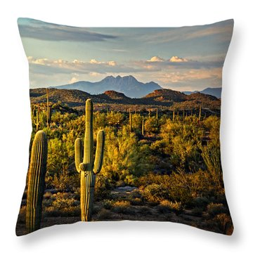 In The Golden Hour  Throw Pillow by Saija  Lehtonen