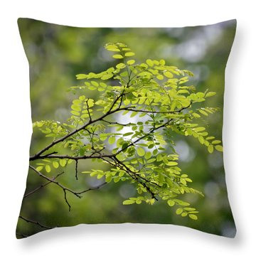 Throw Pillow featuring the photograph In The Green by Kerri Farley