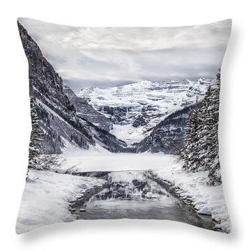 In The Heart Of The Winter Throw Pillow