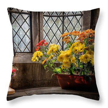 In The Light Throw Pillow by Adrian Evans