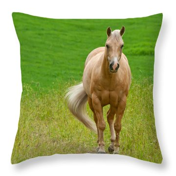 In The Meadow Throw Pillow by Torbjorn Swenelius