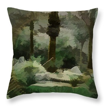 Abstract In The Middle Of The Desert Throw Pillow