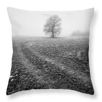 Throw Pillow featuring the photograph In The Mist by Davorin Mance