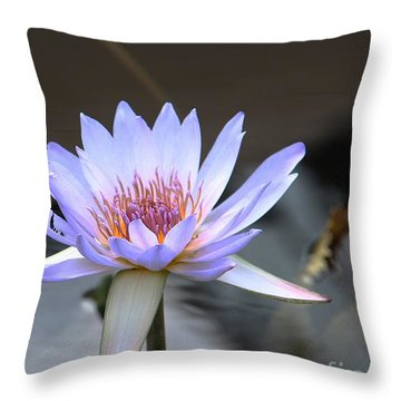 In The Morning Light Throw Pillow by Yvonne Wright