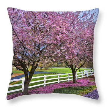 In The Pink Throw Pillow by Debra and Dave Vanderlaan