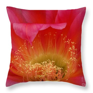 In The Pink Throw Pillow by Vivian Christopher