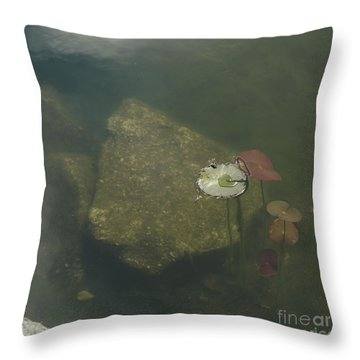 Throw Pillow featuring the photograph In The Pond by Carol Lynn Coronios