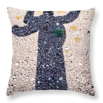 In The Shadow Of A Saguaro Cactus Throw Pillow