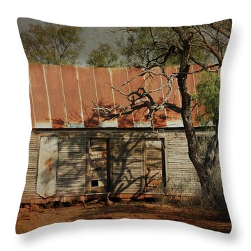 In The Shadow Of Time Throw Pillow