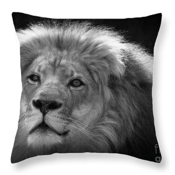 In The Shadows 3 Throw Pillow by Lisa L Silva
