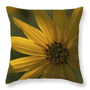 Throw Pillow featuring the photograph In The Shadows - A Yellow Wildflower by Jane Eleanor Nicholas