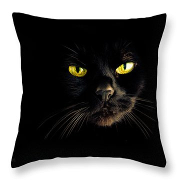 In The Shadows One Black Cat Throw Pillow by Bob Orsillo