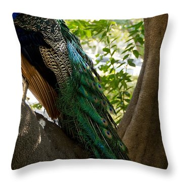 In The Shadows Throw Pillow by Peggy Hughes