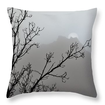 In The Silence Throw Pillow by Diane Alexander