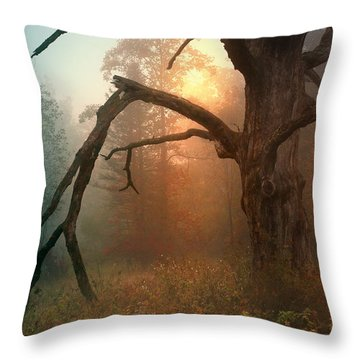 In The Stillness Throw Pillow