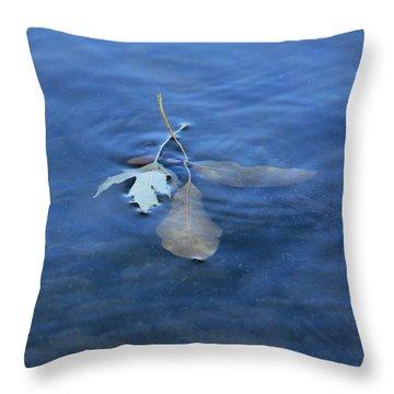 In The Stillness Throw Pillow