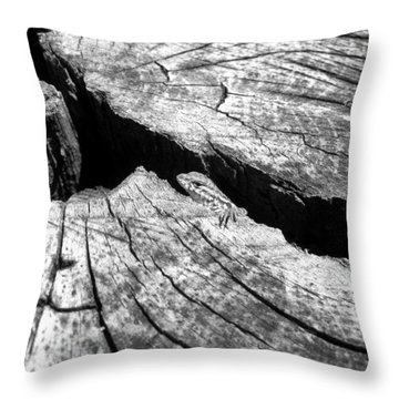 Lizard  House Throw Pillow