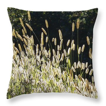 In The Sunshine Throw Pillow by Joy Nichols