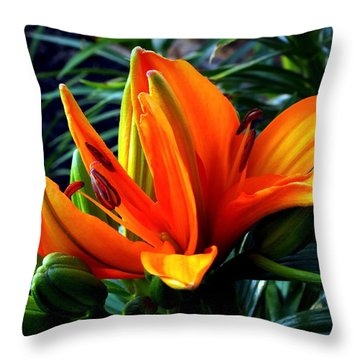 In The Tropics Throw Pillow by Karen Wiles