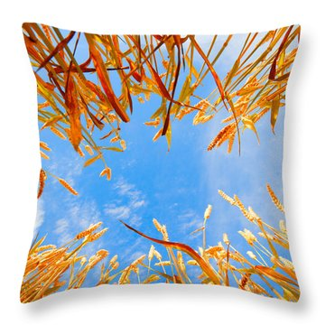 In The Wheat Throw Pillow by Alexey Stiop