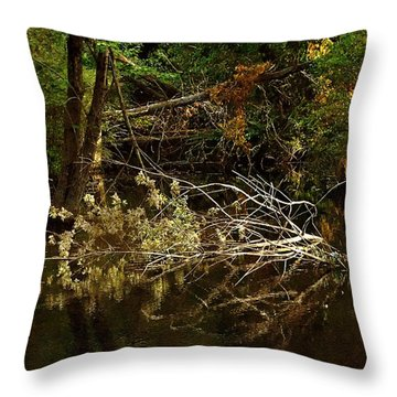 In The Wild Wood Throw Pillow by RC deWinter