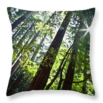 In The Woods Throw Pillow by Ana V Ramirez