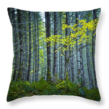 Throw Pillow featuring the photograph In The Woods by Belinda Greb