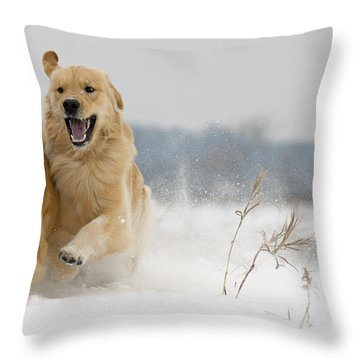 In Their Element Throw Pillow