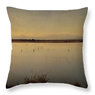 In These Peaceful Moments Throw Pillow by Laurie Search