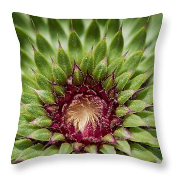 In Thistle's Heart Throw Pillow