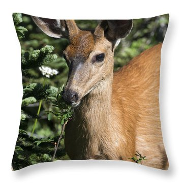 In Velvet Throw Pillow