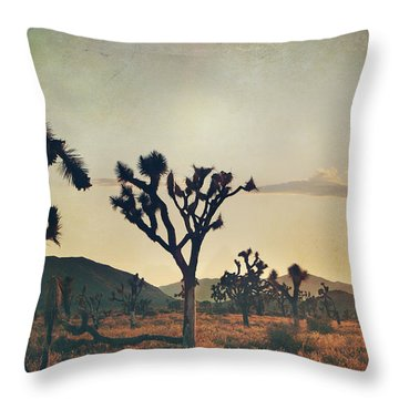 In Your Arms As The Sun Goes Down Throw Pillow by Laurie Search