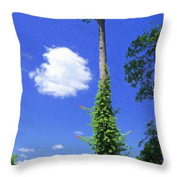 Throw Pillow featuring the photograph Incoming by Jim Whalen