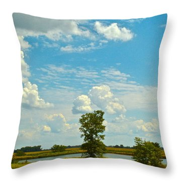 Incoming Throw Pillow by Frozen in Time Fine Art Photography