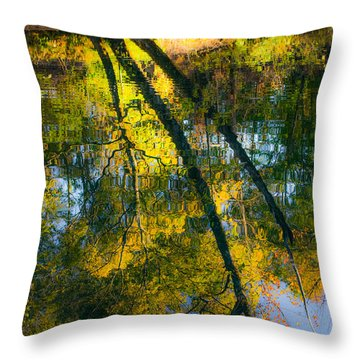 Incredible Colors Throw Pillow by Parker Cunningham