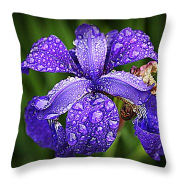 Incredible Iris Throw Pillow