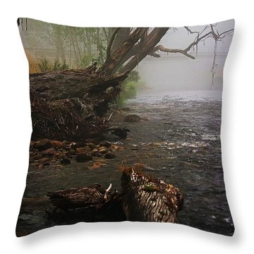 Indeed It Was A Mystical Place Throw Pillow