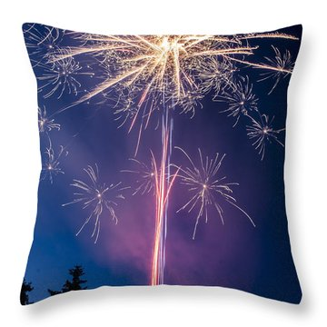 Independence Day 2014 1 Throw Pillow