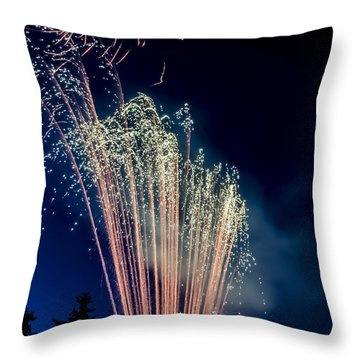 Independence Day 2014 16 Throw Pillow