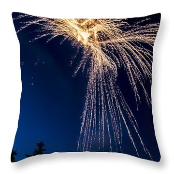 Independence Day 2014 8 Throw Pillow