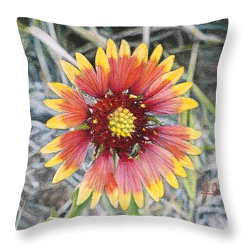 Indian Blanket Throw Pillow